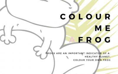 Colour Me A Frog Poster